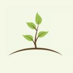 Profilbild von Garten- und Landschaftsbau Frank Eilhard
