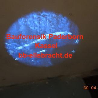 Bauforensik Paderborn Kopie