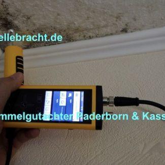 Schimmelgutachter Kassel Kopie 4