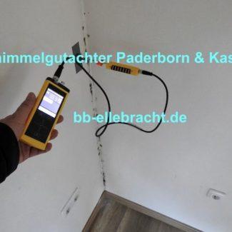 Schimmelgutachter Paderborn Kopie 6