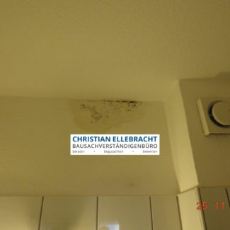 Schimmelgutachter Paderborn und Kassel Kopie 2