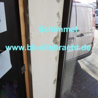 Schimmelgutachter Schwarzschimmel Kassel Paderborn